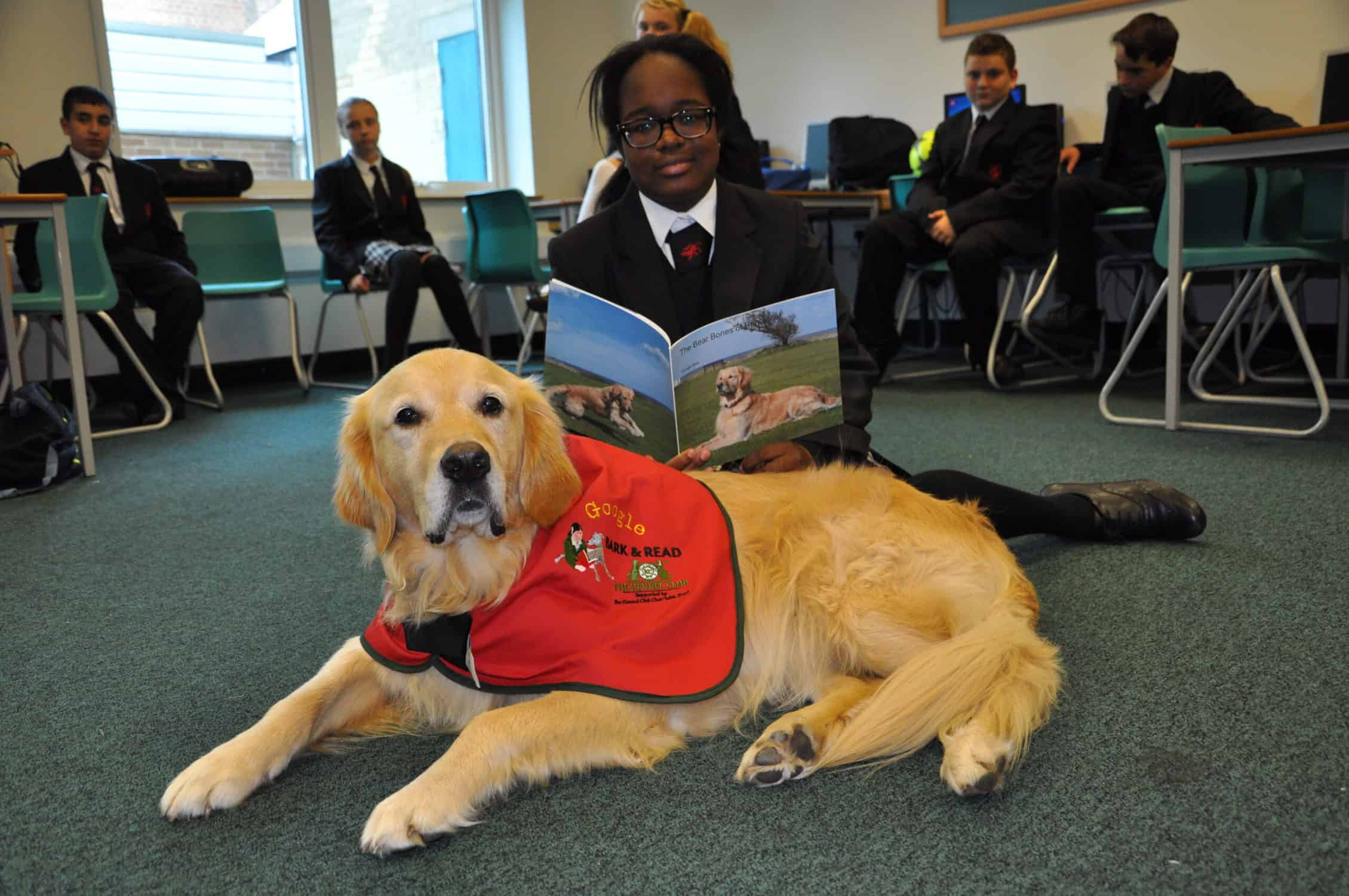 When kids read to dogs their reading and confidence is given a boost. The Kennel Club explains why they train dogs to read in schools to improve literacy programs.