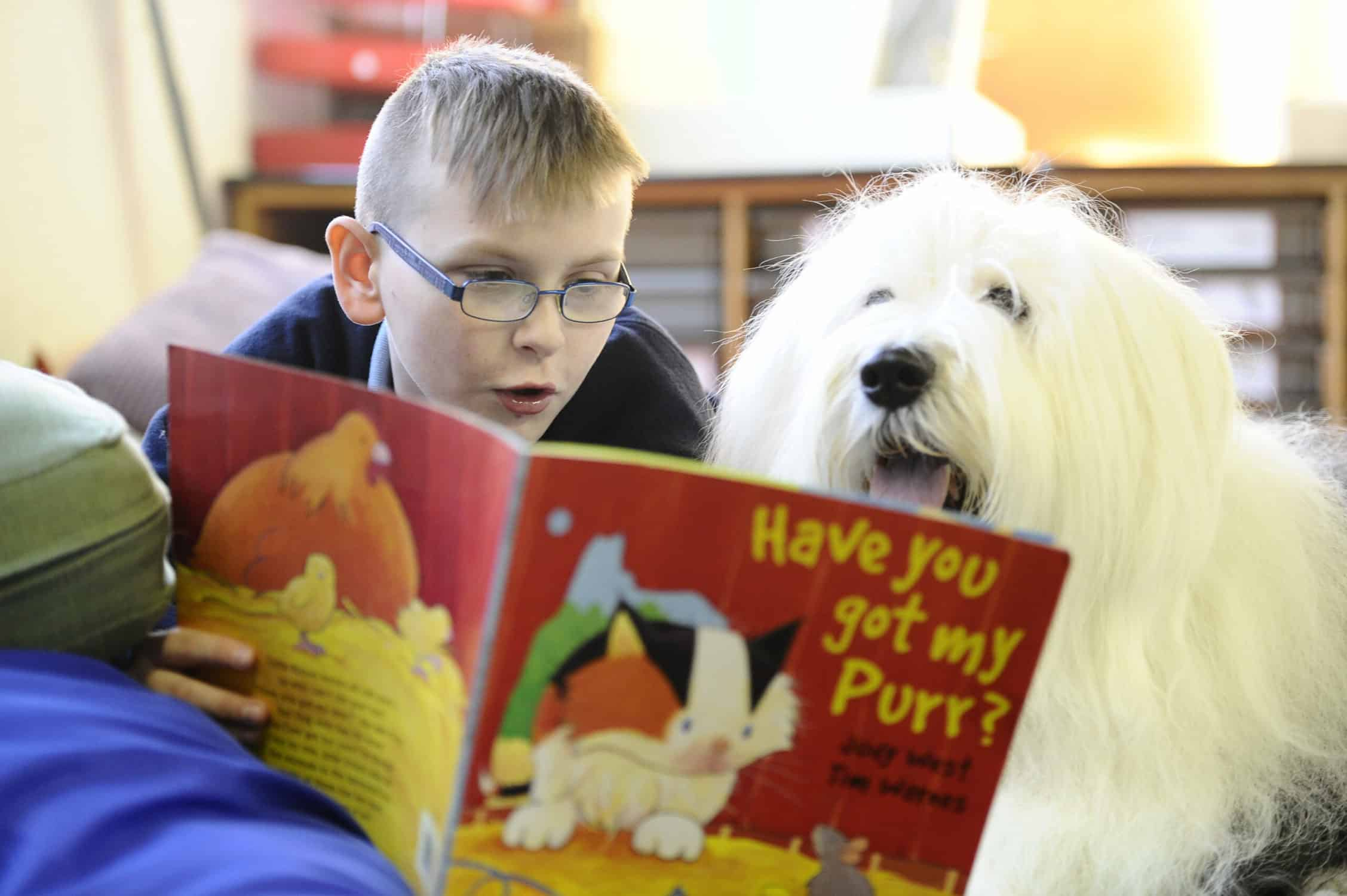 When kids read to dogs their reading and confidence is given a boost. The Kennel Club explains why they train dogs to read in schools to improve child literacy