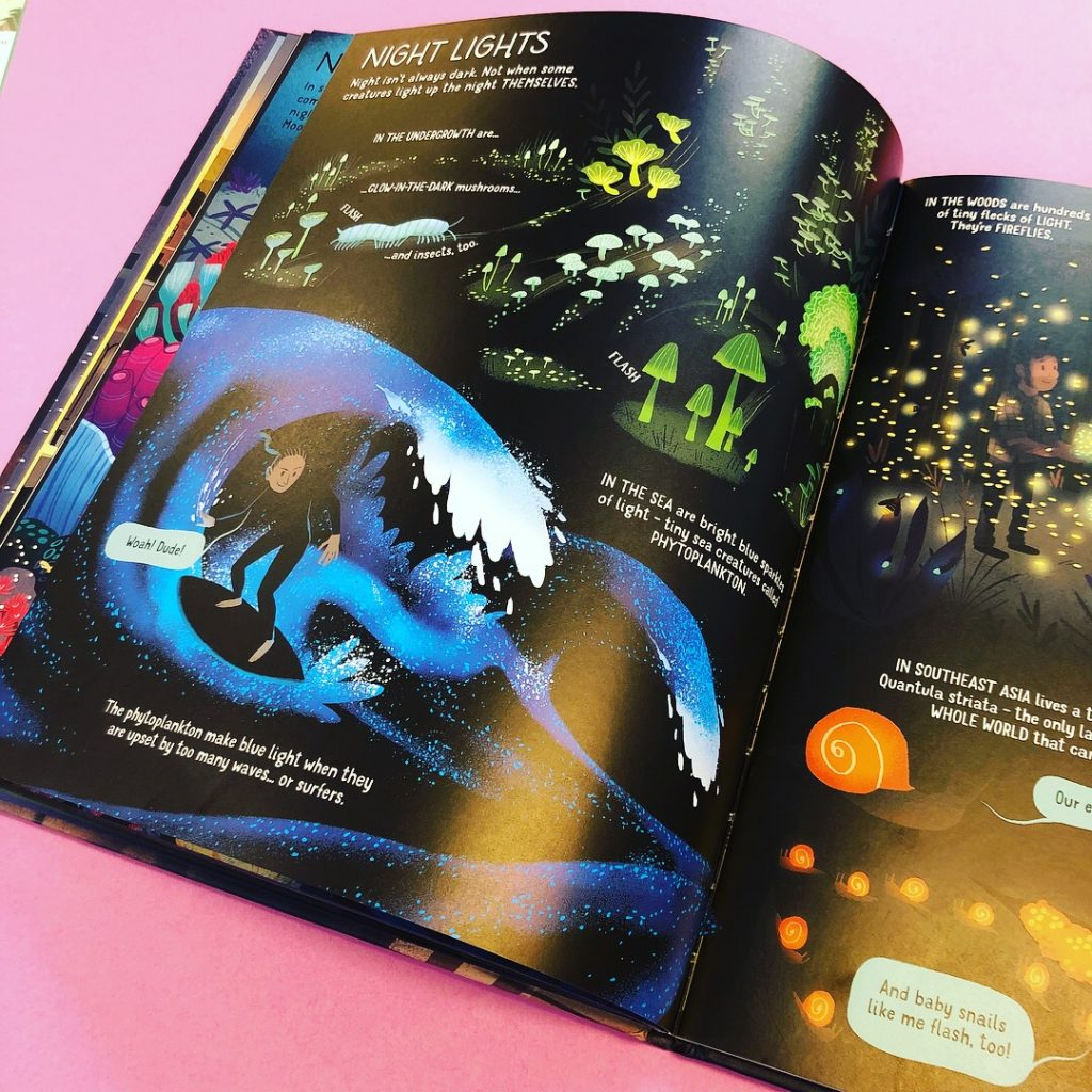 The Usborne Book of Night Time review, usborne books, tidy books, kids book review, recommended kids books reading, usborne book of night time